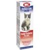 Cat Veterinary