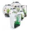Biorb Aquariums And Stands