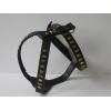 Koko Staffordshire Bull Terrier Leather Harnesses