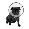 Veterinary Smart Dog Collars