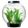 Baby Biorb Aquarium Standard Led Black 15 Ltr