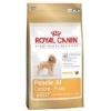 Royal Canin Adult Poodle 30 1.5kg