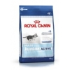 Royal Canin Dog Junior Maxi Active <15 Months 4kg