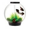 Biorb 30ltr Black Led Tropical Aquarium