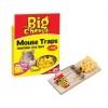 Stv Baited Rtu Mouse Trap - Twin