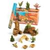 Terrarium Desert Starter Kit 12 Piece