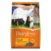 Burgess Excel Adult Guinea Pig Nuggets With Mint 10kg