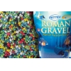 Roman Gravel Spectrum Mix 2kg