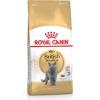 Royal Canin Dry Cat Food British Shorthair 34 400g