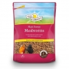Harrisons High Energy Mealworms 1kg Pouch